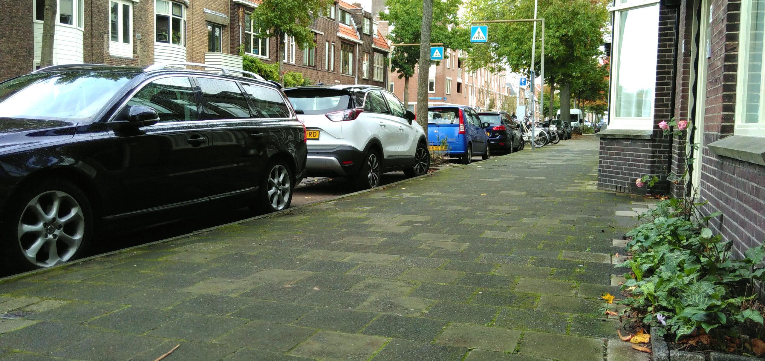 Wat als deze straat minder auto's in zouden staan en meer groen?
